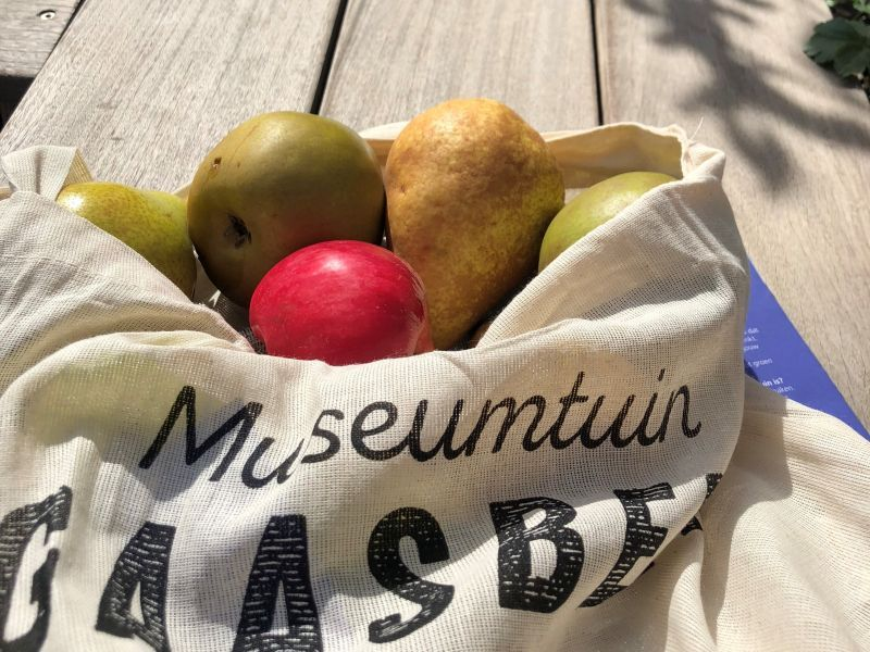Praktijkopleiding fruit kweken en telen in Gaasbeek